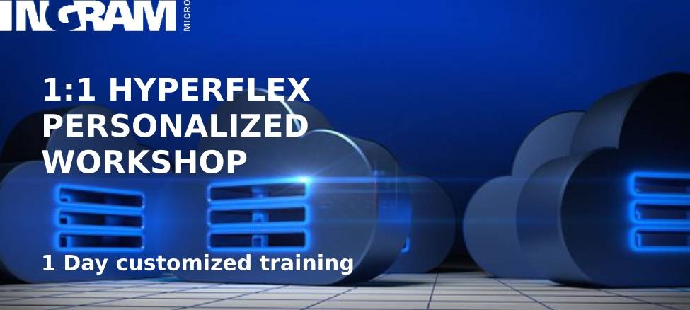 1:1 Hyperflex Personalized Workshop (1 day customized training)